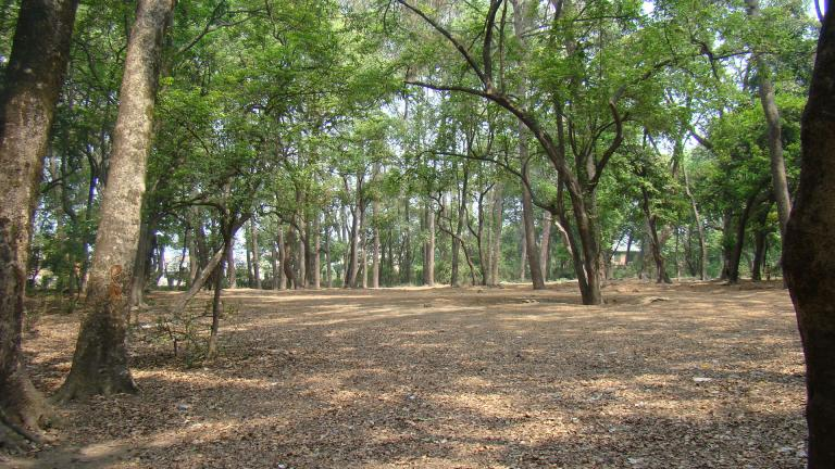 Bhandarkhal image camp site